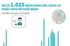 [Infographics] Việt Nam chữa khỏi cho 1.025 bệnh nhân COVID-19