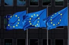 EU sắp được WTO 'bật đèn xanh' để áp thuế trừng phạt Mỹ