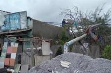 Khẩn trương cấp điện trở lại cho các hộ dân bị ảnh hưởng bởi bão số 6