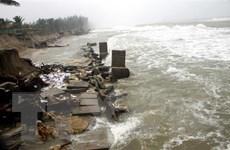 Quảng Nam: Mưa lũ làm sạt lở hơn 400 mét bờ biển Thịnh Mỹ