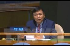 Việt Nam thúc giục các bên tại Trung Phi tôn trọng cam kết hòa bình