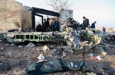 Iran và Ukraine khởi động vòng đàm phán mới về vụ máy bay bị bắn nhầm