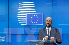 EU: Việc phá vỡ bế tắc trong đàm phán hoàn toàn phụ thuộc vào Anh