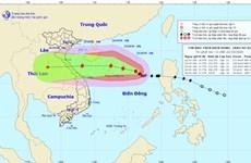Dự báo bão số 8 có thể vào khu vực Quảng Bình-Quảng Trị