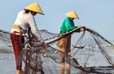 [Photo] Làng chài nhỏ xinh bị 'lãng quên' bên bãi biển Sầm Sơn