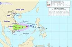 Bão số 12 mạnh thêm, khu vực Quảng Trị đến Khánh Hòa có mưa rất to