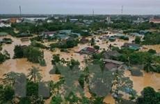 Tái thiết sau lũ ở Quảng Trị: Khôi phục sản xuất nông-ngư nghiệp