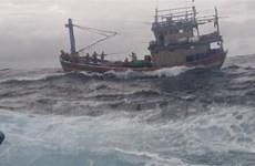 Tàu kiểm ngư cứu hộ kịp thời một tàu cá với 13 ngư dân Bình Định