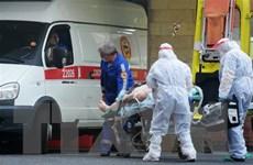 Nga: Xuất hiện các biến thể virus SARS-CoV-2 tại khu vực Siberia