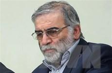 LHQ hối thúc kiềm chế sau vụ nhà khoa học hạt nhân Iran bị ám sát