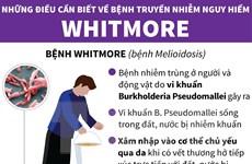 [Infographics] Những điều cần biết về căn bệnh nguy hiểm Whitmore