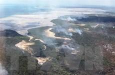 Cháy rừng thiêu rụi một nửa diện tích hòn đảo di sản thế giới Fraser