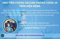 [Infographics] Anh tiêm chủng vắcxin phòng COVID-19 trên diện rộng
