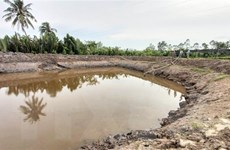 Bến Tre trích 38,5 tỷ đồng hỗ trợ người dân bị thiệt hại bởi hạn mặn