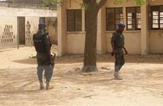 Nigeria đàm phán với nhóm bắt cóc nhằm giải cứu hàng trăm học sinh