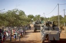 Nhìn lại thế giới 2020: Bức tranh tối màu về nạn khủng bố ở châu Phi