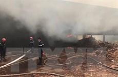 Bình Dương: Hỏa hoạn thiêu rụi kho mùn cưa 300m2 của công ty gỗ