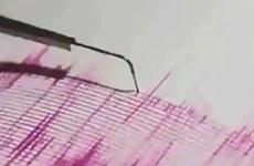 Động đất ngoài khơi Nhật Bản, không có cảnh báo sóng thần