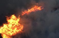Ai Cập: Hỏa hoạn tại bệnh viện điều trị bệnh nhân COVID-19