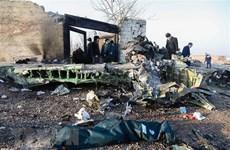 Iran bồi thường 150.000 USD cho gia đình nạn nhân vụ bắn nhầm máy bay