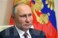 Tổng thống Putin gửi lời chúc Năm mới và Tết cổ truyền của Việt Nam