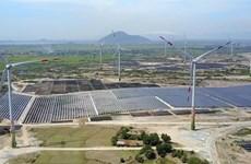 Xây dựng Ninh Thuận thành vùng lõi về phát triển năng lượng tái tạo
