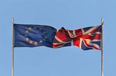 Nghị viện châu Âu xem xét thỏa thuận thương mại với Anh