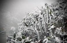 Không khí lạnh tăng cường, Bắc Bộ mưa rét, vùng núi cao dưới 0 độ C