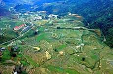 Lan tỏa hiệu quả vẻ đẹp bản sắc văn hóa của giang sơn, gấm vóc Việt