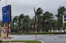 Bão và áp thấp nhiệt đới sẽ bắt đầu xuất hiện từ tháng Sáu