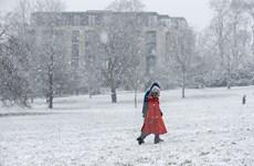 Bão tuyết, giá lạnh ảnh hưởng mạnh nhiều quốc gia ở châu Âu