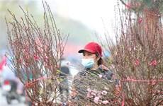 Chất lượng không khí Hà Nội ở mức trung bình trong ngày 29 Tết