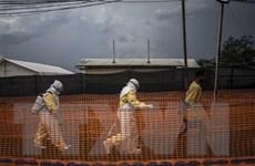 WHO: Thêm 1 ca tử vong do Ebola ở Cộng hòa Dân chủ Congo