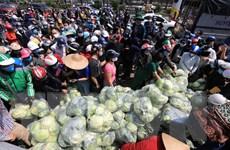 Hệ thống phân phối Hà Nội nỗ lực tiêu thụ nông sản cho Hải Dương