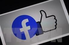 Facebook: Nền tảng kỹ thuật số phải đáp ứng yêu cầu sàng lọc thông tin