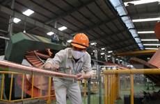 Hải Dương nhanh chóng phục hồi sản xuất, kinh doanh sau dịch COVID-19