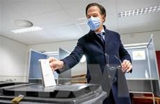 Triển vọng thành lập chính phủ mới ở Hà Lan vẫn đang bế tắc