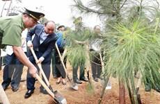 Chủ tịch nước dự Lễ phát động trồng cây 'Đời đời nhớ ơn Bác Hồ'