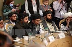 'Thế thượng phong' của Taliban ở Afghanistan bắt nguồn từ đâu?