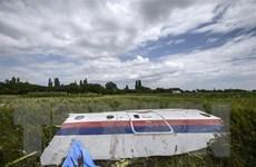 Vụ rơi máy bay MH17: Tòa án Hà Lan dự kiến chưa đưa ra phán quyết