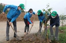 Xã hội hóa nguồn lực để trồng 1 tỷ cây xanh giai đoạn 2021-2025
