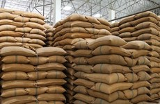 Thị trường nông sản thế giới tuần qua: Giá gạo Ấn Độ thấp nhất 3 tháng