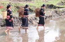 Lễ cúng Giọt nước - nét đẹp văn hóa của dân tộc Jrai ở Tây Nguyên