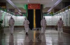 Triều Tiên tăng cường nỗ lực ngăn chặn dịch COVID-19 trong mùa Xuân