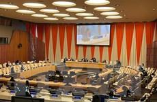 Ấn Độ và Lào đánh giá cao vai trò tích cực của Việt Nam tại HĐBA
