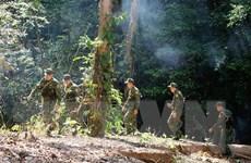 Quảng Nam siết chặt công tác tuần tra, kiểm soát tuyến biên giới