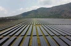 BNN Bloomberg: Việt Nam 'bùng nổ' trong lĩnh vực năng lượng Mặt Trời