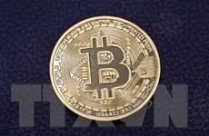 Liên tục lao dốc, sức hấp dẫn của bitcoin đang bị lung lay?