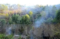 Nóng đỉnh điểm, cấp báo động cháy rừng ở Lào Cai lên mức nguy hiểm