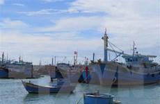 Khắc phục thẻ vàng IUU: Ưu tiên nguồn vốn đầu tư công cho cảng cá
